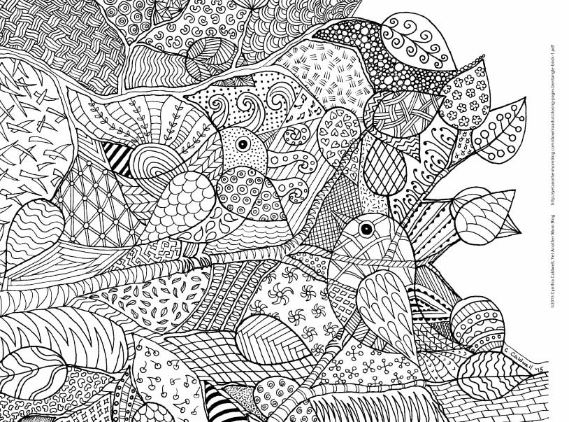 Mindful Drawing And Zentangles